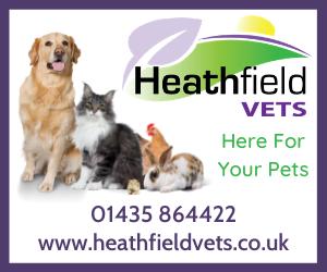 heathfield-vets