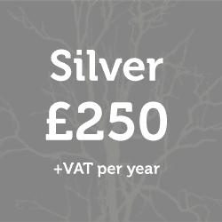 Silver Membership: £250 + vat per year